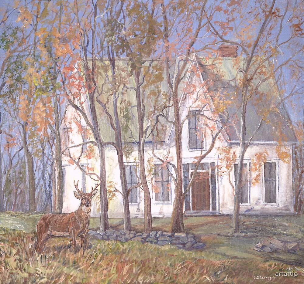 House in Jemseg by artattic
