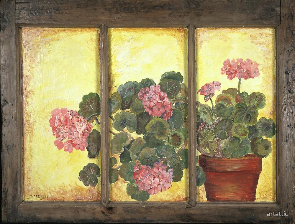 Pink Geraniums on Glass  by artattic