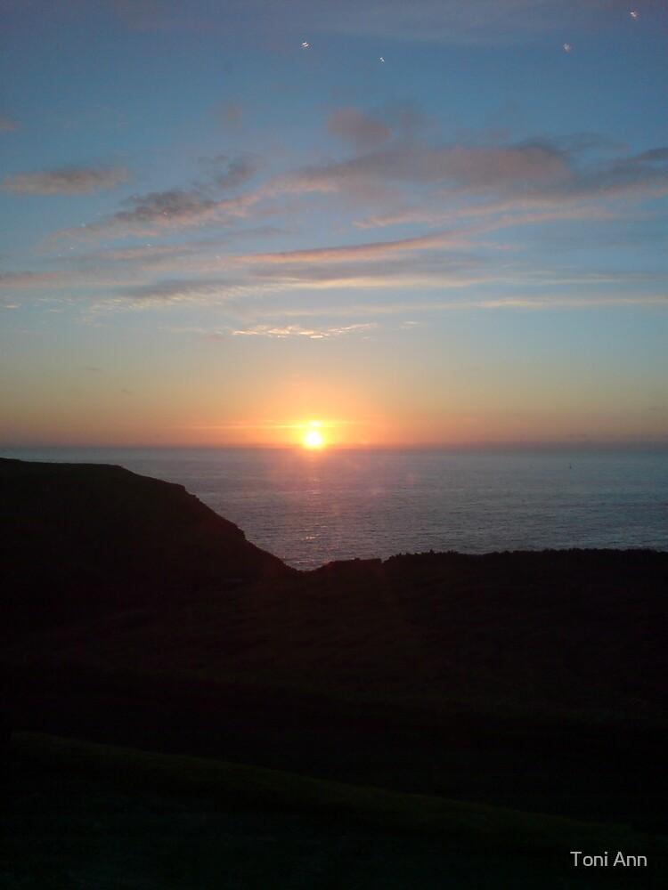 Sunset by Toni Ann