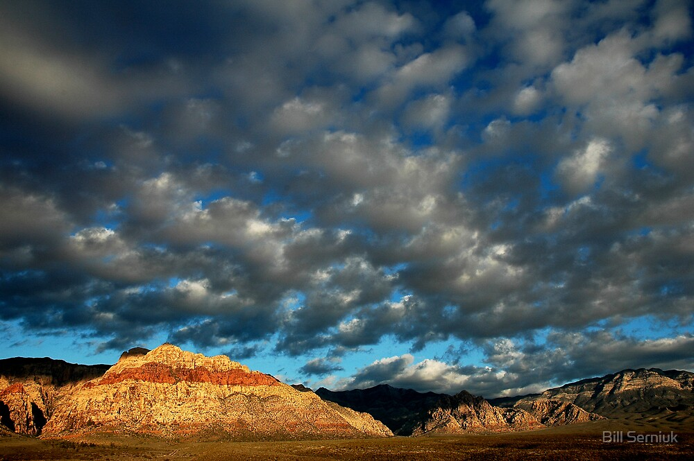 Red Rocks-Nevada by Bill Serniuk