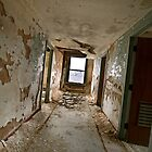 Abandoned Pines Hotel - 8 by mal-photography