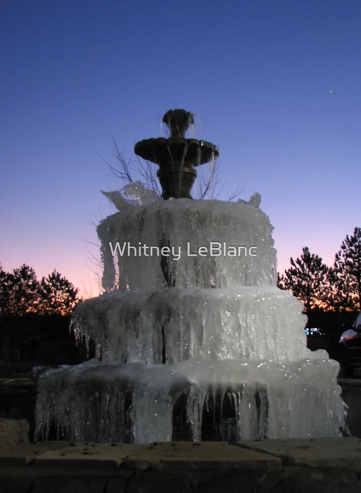 Frozen Fountain by Whitney LeBlanc