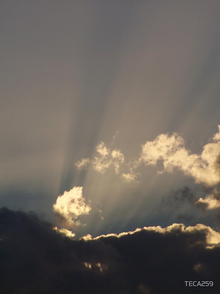 Rays of Light by TECA259