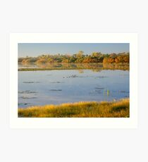 Dawn at Mamukala Wetlands, Northern Territory Art Print