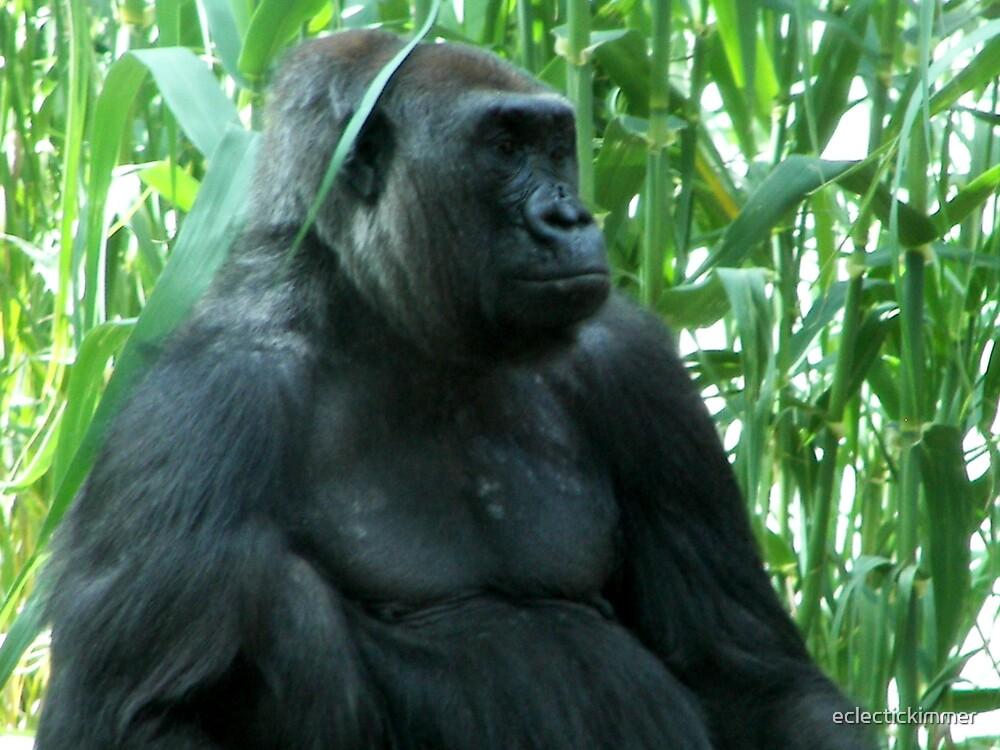 Gorilla by eclectickimmer