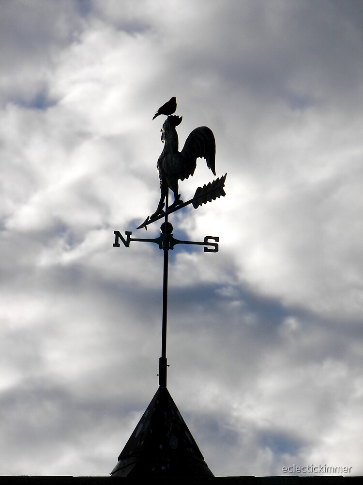 Weather Vane by eclectickimmer
