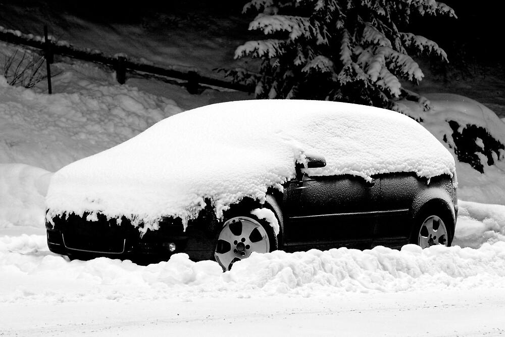 Snowed In by Adrian Richardson