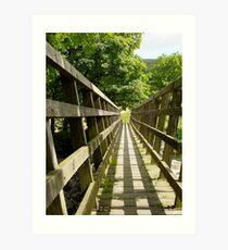 Footbridge Art Print