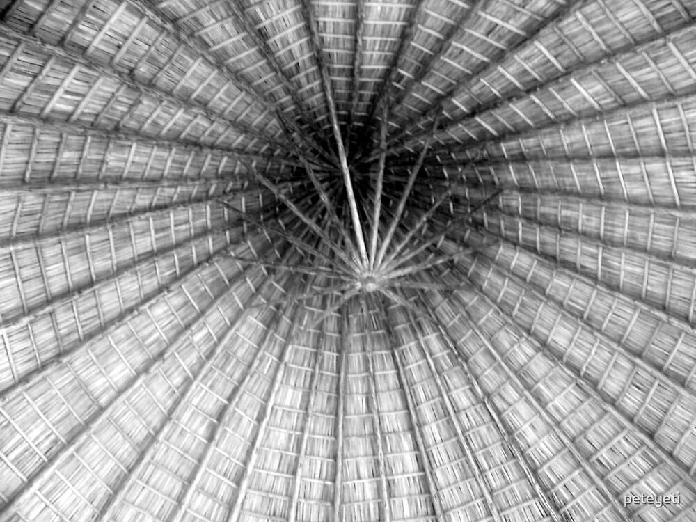 Cuban thatch by peteyeti