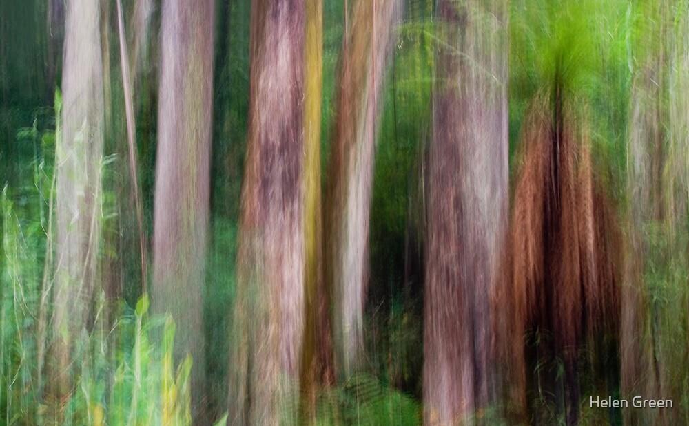Great Australian Bush by Helen Green