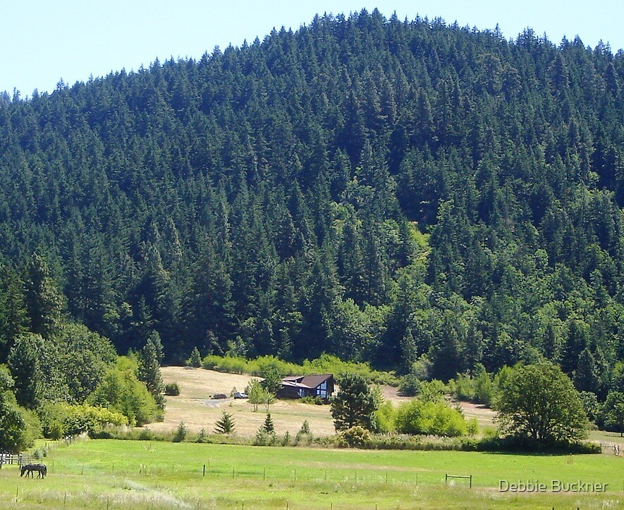 A Peek at Oregon  by Debbie Buckner