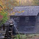 Mingus Mill by Gary L   Suddath