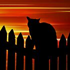 Night Life by Ladymoose