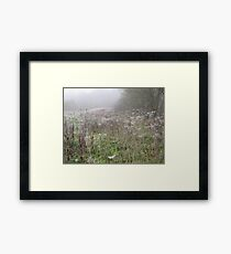 Image one hundred and twenty seven Framed Print