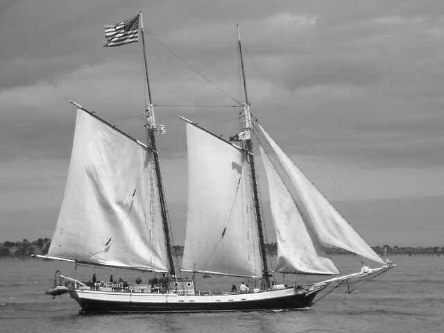 A Freedom Sail Boat by tabo32