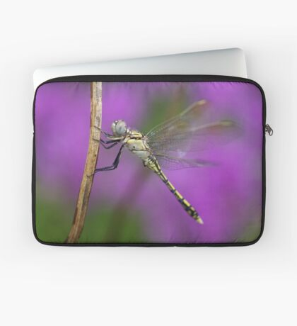 Fairies in my Garden Laptop Sleeve