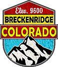 SKI BRECKENRIDGE COLORADO SKIING RESORT SNOWBOARDING HIKING BIKING by MyHandmadeSigns