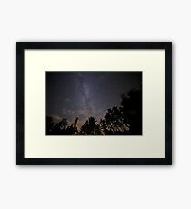 Starry Night From Planet Earth Milkyway Forrest  Framed Print
