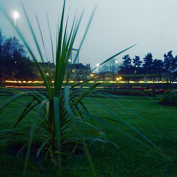 Victoria Park by kringmurphy
