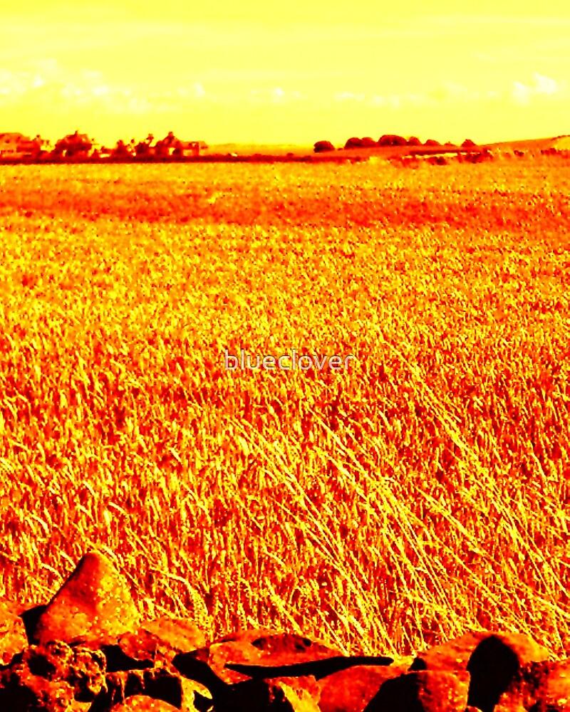 Crops Field Fiery effect by blueclover