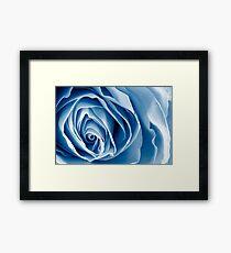 Blue Rose Macro Framed Print