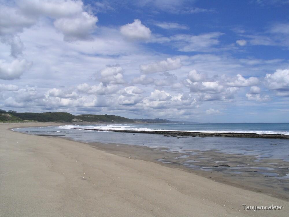Sigatoka Beach, Fiji by Tanyamcaleer