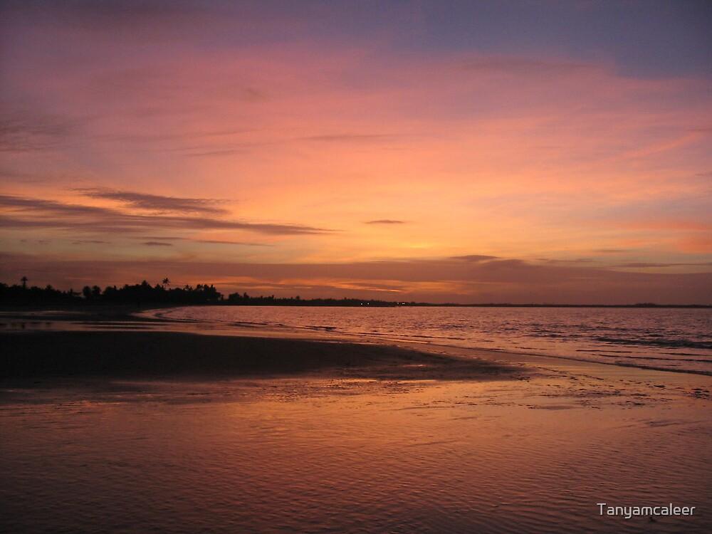 Nadi Susnet, Fiji by Tanyamcaleer