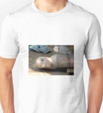 Angel at Rest Unisex T-Shirt