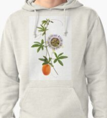Passion Pullover Hoodie
