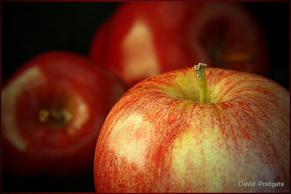 Apples by David  Postgate