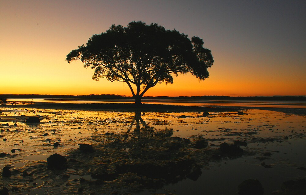 the lone tree by smurf