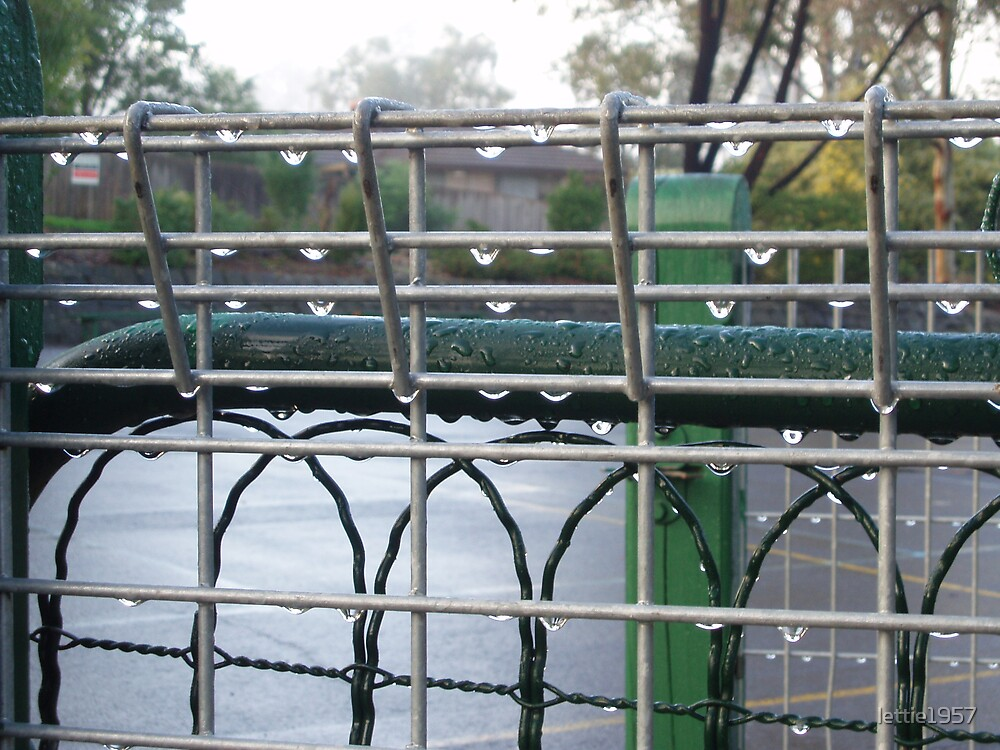 raindrops on fence and gate by lettie1957