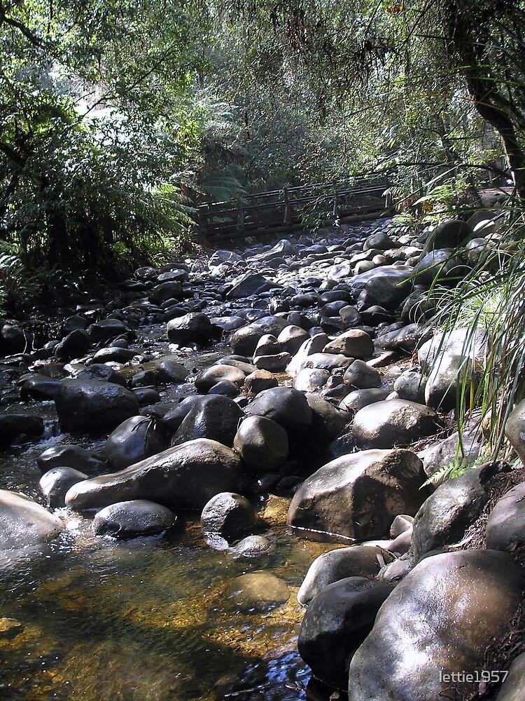 Badger Creek Weir  by lettie1957