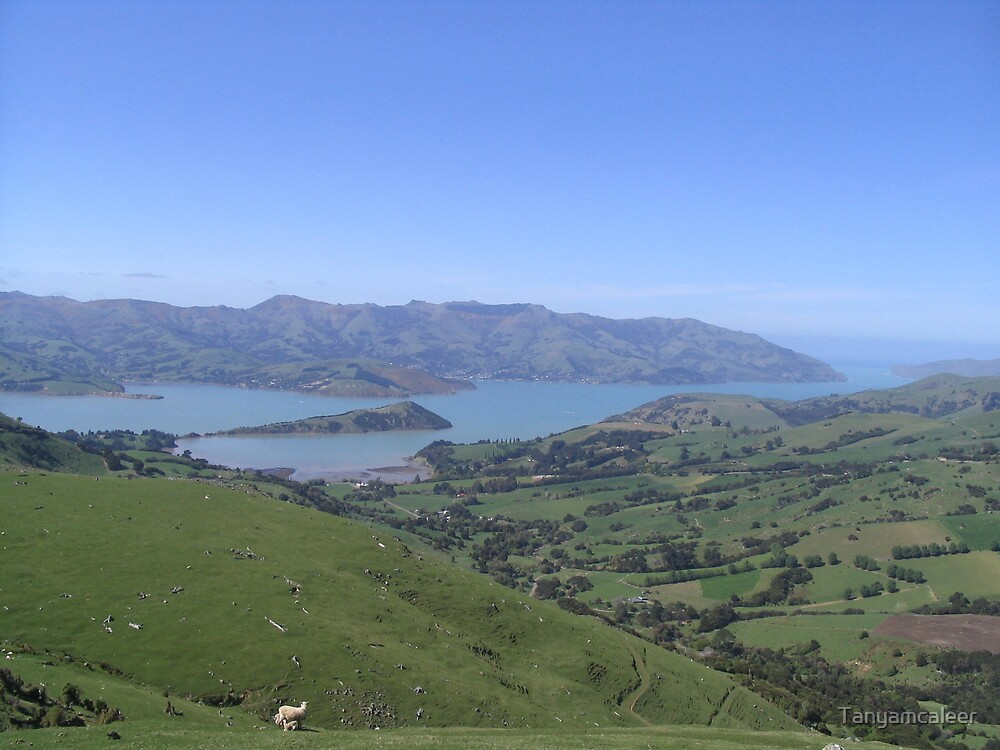 Akaroa View, New Zealand by Tanyamcaleer