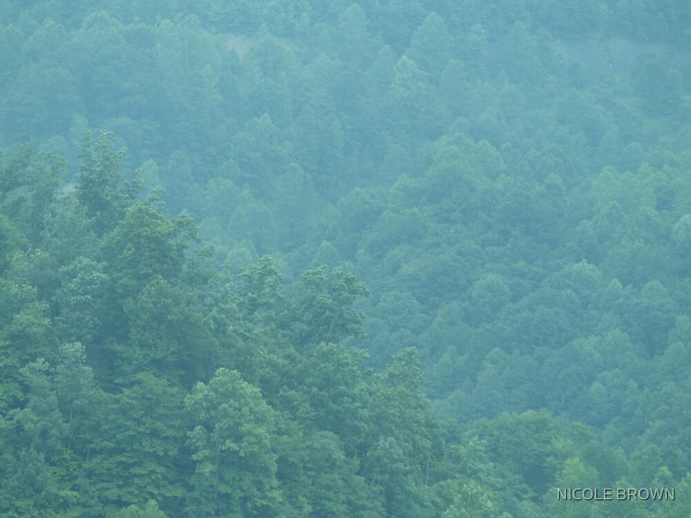 WV MOUNTAINS by NICOLE BROWN