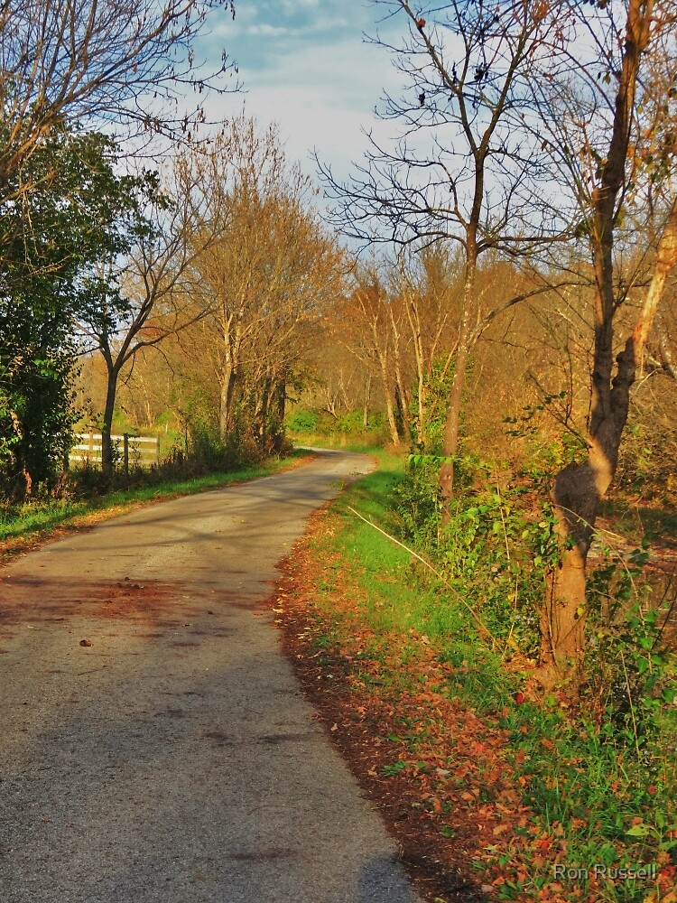 Late October Afternoon on Owl Creek Road by Ron Russell