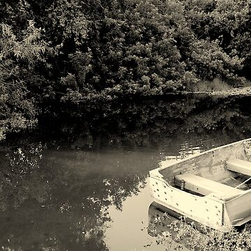 Lake Scene by matthiasceconi