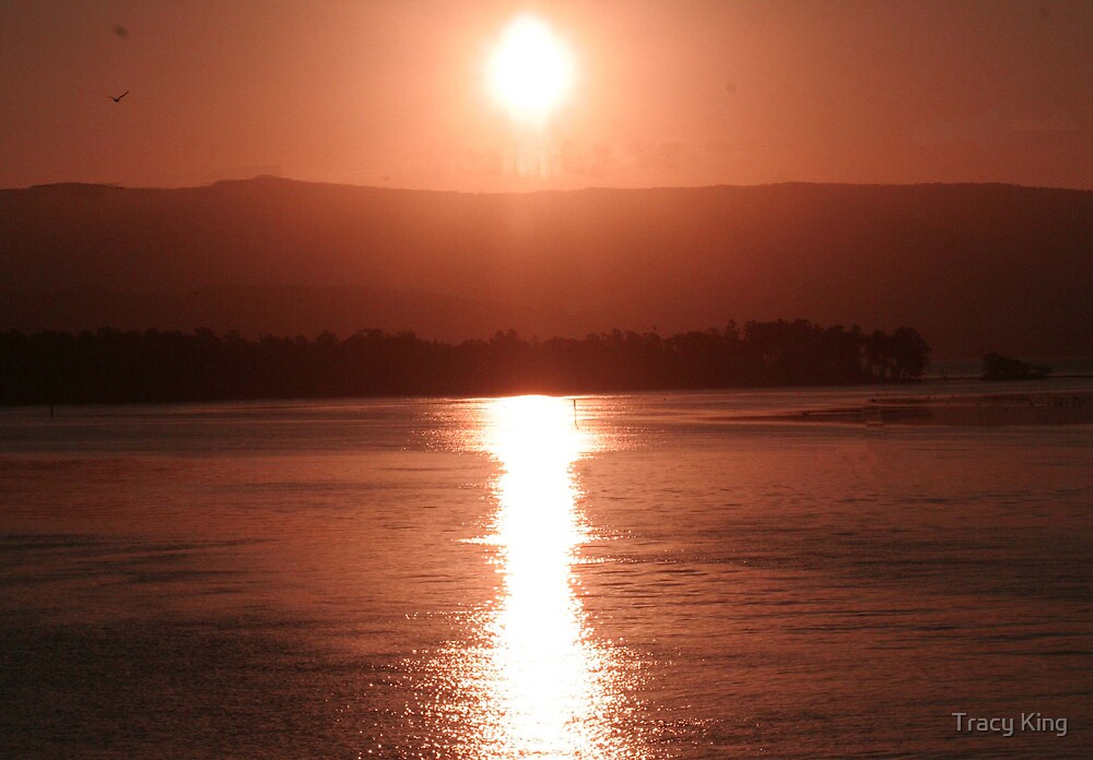 SUNSET LAKE ILLAWARRA by Tracy King