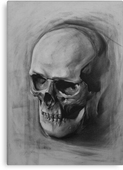 Skull by SylvainKlein