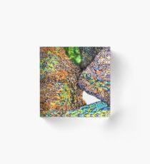 c7-Bright Boulders Upclose Acrylic Block