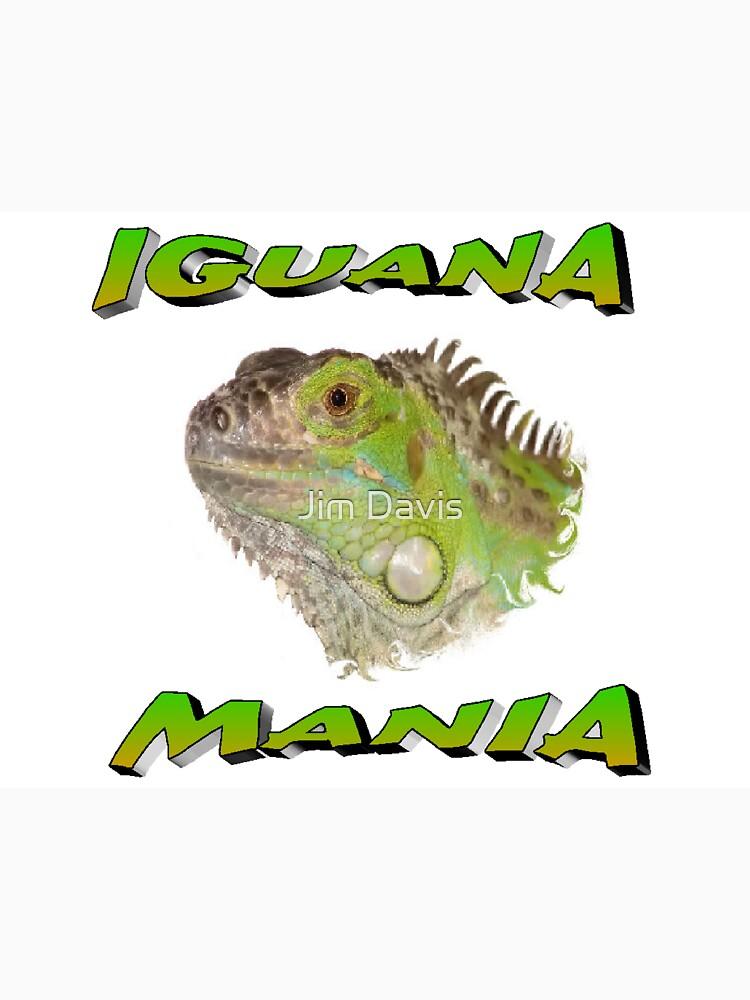 Iguana Mania by JimmyD