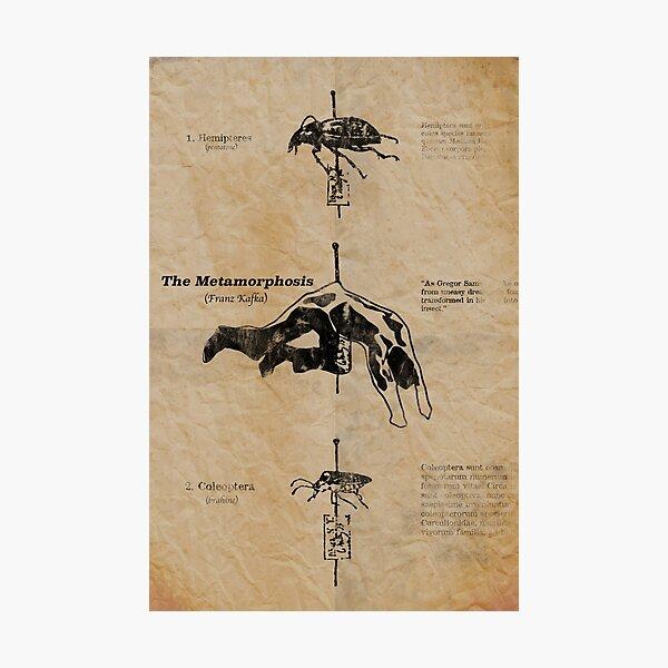 The Metamorphosis by Franz Kafka Photographic Print