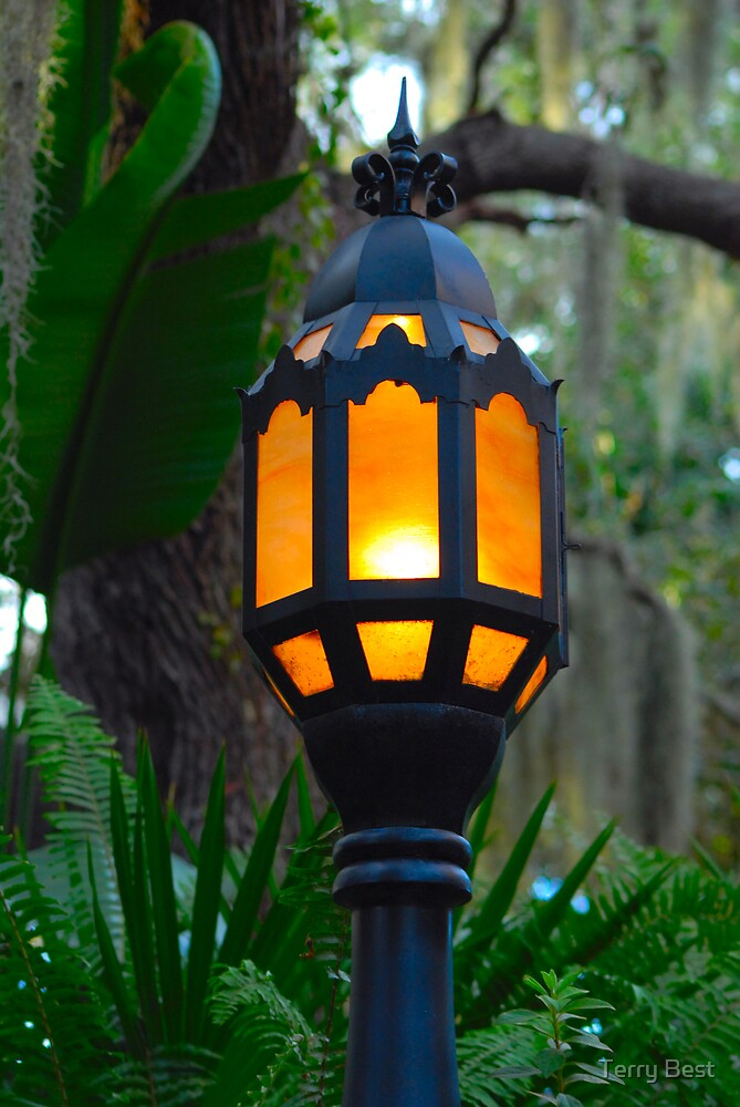 Lamp Post by Terry Best