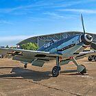 Messerschmitt Bf109G-4 D-FWME by Colin Smedley