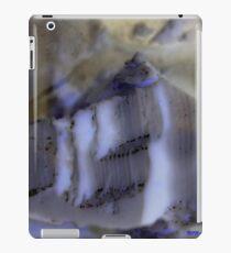 NORTH POLE  iPad Case/Skin