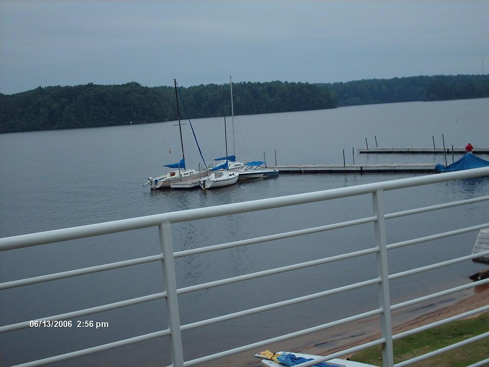 Lake Wheeler by peggyprescott