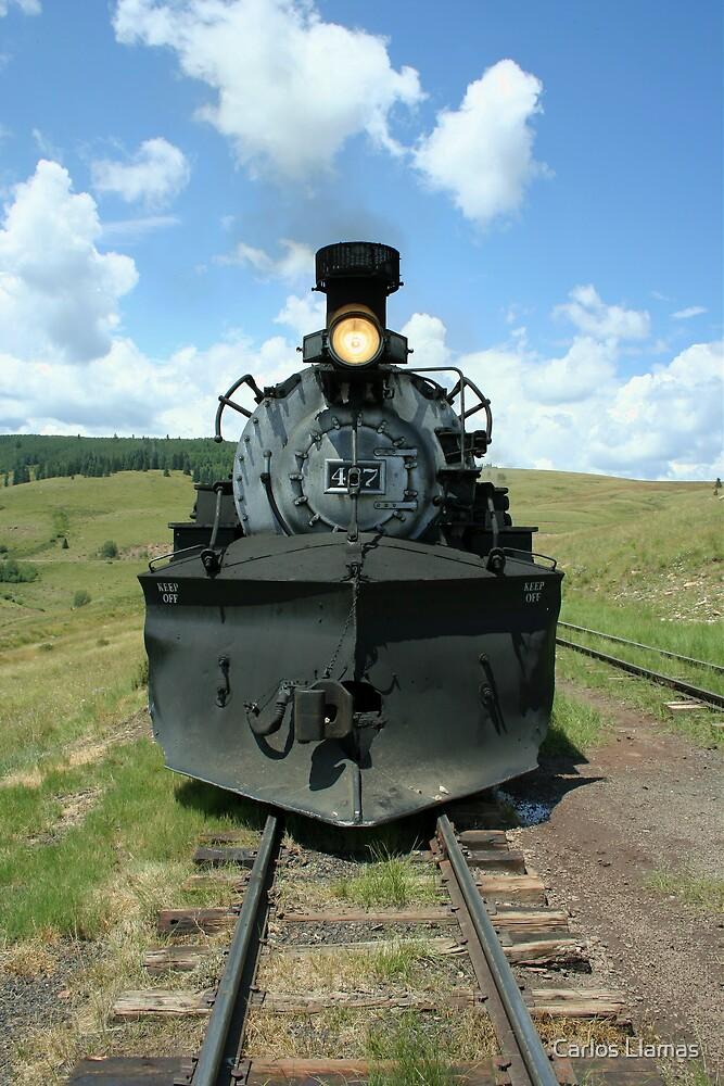Steam Locomotive 487 at Osier, Colorado. by Carlos Llamas