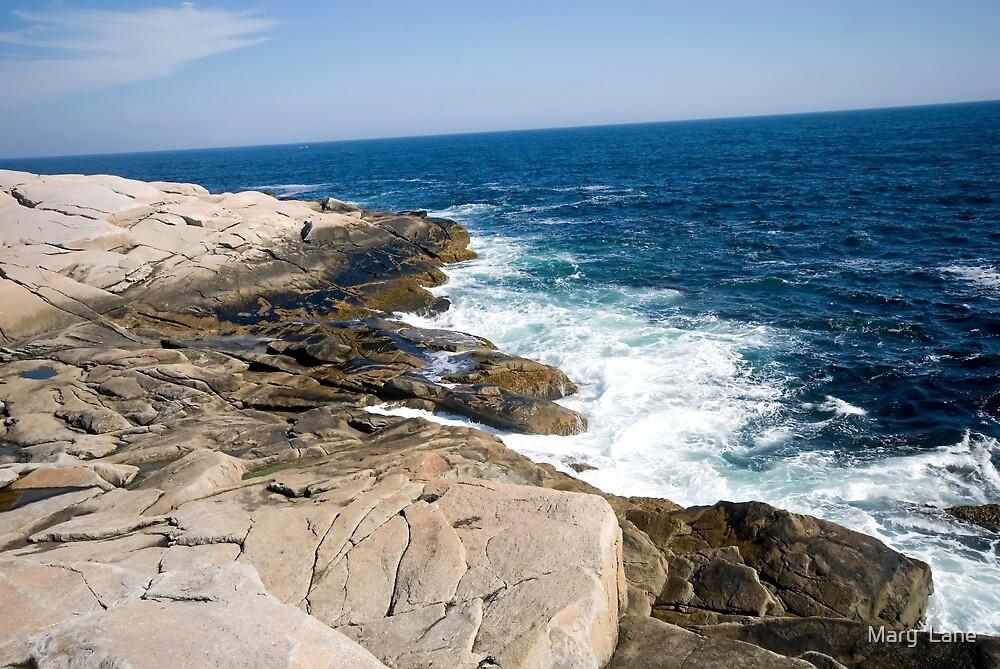 Atlantic Coastline by Mary  Lane