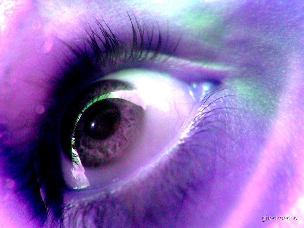Purple Vision by gheckoecho