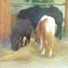 Cavalli by marcocreazioni